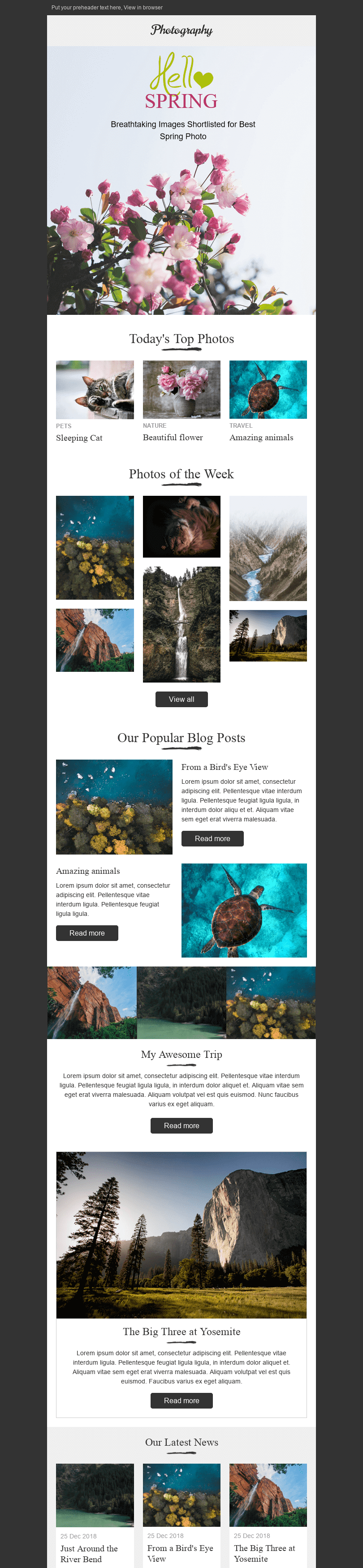 "Promo Email Template ""Amazing Nature"" for Photography industry desktop view"