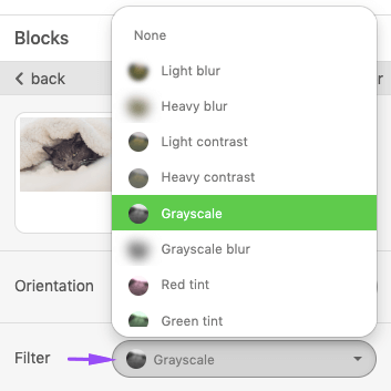 Applying Grayscale Filters to Images