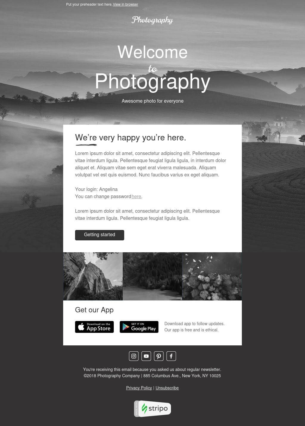 Black and White Email Built with Stripo