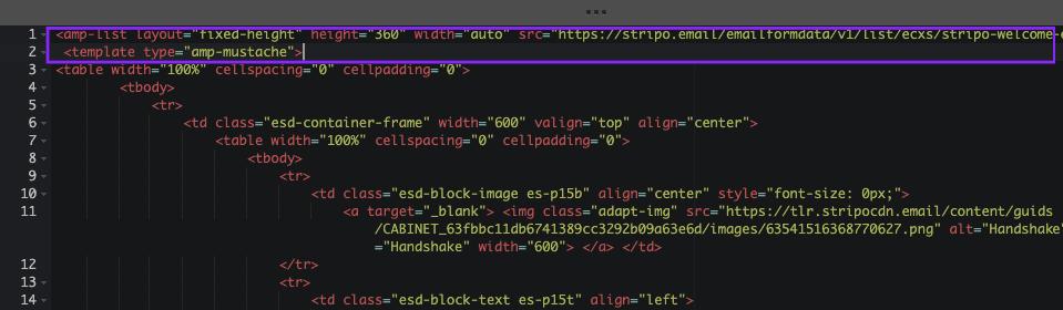 Inserting AMP Code