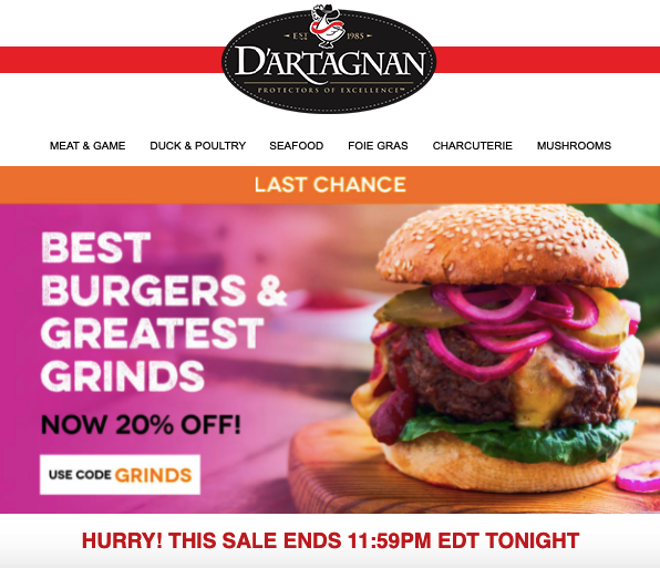 Last Chance Newsletter Emails_Final Day of a Sale