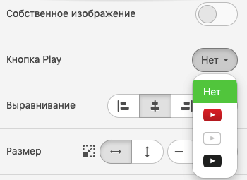 Setting-Custom-Image-and-Neutral-PlayButton-to-Videos_Ru