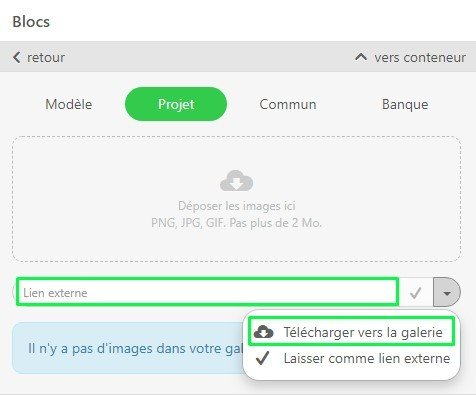 Saving-Images-from-External-Links_FR
