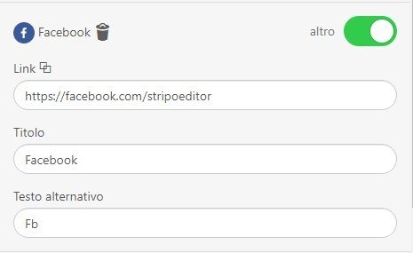 Stripo-Adding-Alt-Text-and-Links-to-Social-Media-Icons_IT