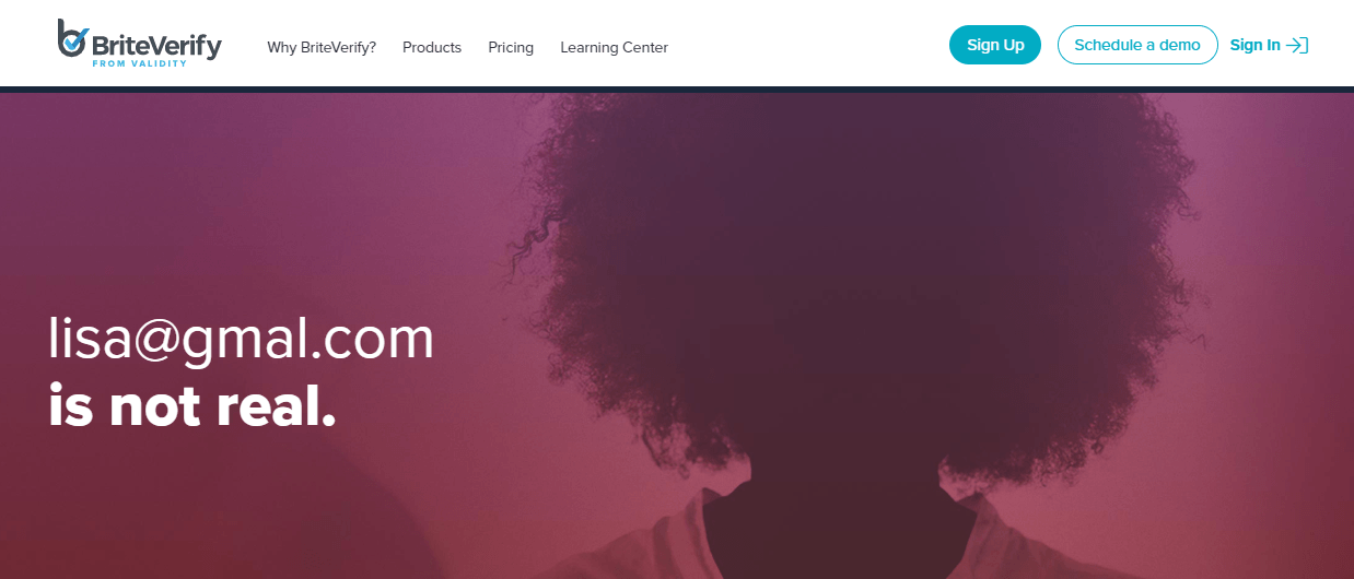 Briteverify_Screenshot of Landing Page